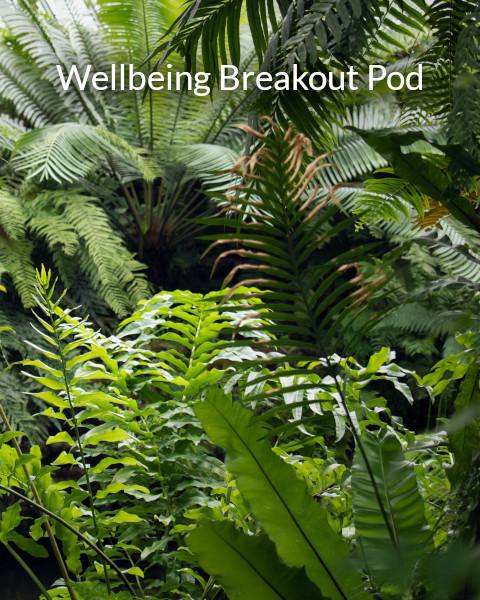 Wellbeing Breakout Pod
